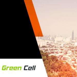 zielony kierunek